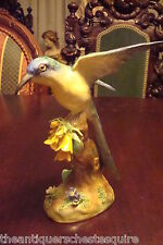 "Crown Staffordshire Bird in a branch signed JT Jones, beautiful colors, 7 1/2""[1"
