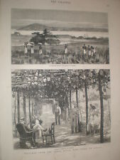 Sketches from the Congo river West Coast Africa 1878 old print