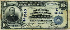 1902 $10 WILLIAM Mc KINLEY NATIONAL CURRENCY CAYUGA COUNTY AUBURN NY  ~REPRO~