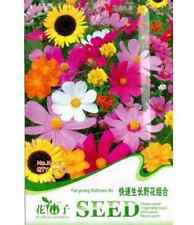 FD1467 Fast Growing Wildflower Mix colorful Seeds ~1 Pack 200 Seeds~ Rare!