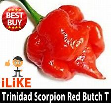 Trinidad Scorpion Butch T 10 Seeds Minimum.  One Of The Worlds Hottest.