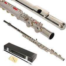 New Nickel-plated Brass School Band Student 16 Hole C Flute Silver