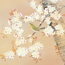 Kakejiku (Japanese Hanging Scroll) SAKURA (C) - with Paulownia Wood