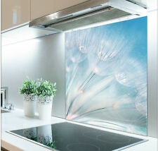 60cm x 70cm Digital Print Glass Splashback Heat Resistant  Toughened 320