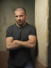 Prison Break UNSIGNED photo - E1834 - Dominic Purcell