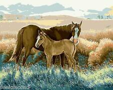 Paint by Number Kit Horses On the Prairie Mother and Son Wild Animals DIY BB7135