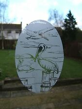 PELICAN SCENE Vinyl Window Decoration / Window Film / Static Cling 53x84cm