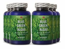 Detoxes Body From Free Radicals - Organic Blue Green Algae 500 - Red Extract 6B