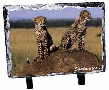 Two Cheetahs 'Soulmates' Photo Slate Christmas Gift Ornament, SOUL-80SL