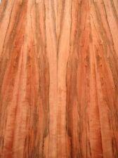 Indischer Apfelbaum Furnier Tineo Y 190x17,5/18cm 7 Blätter