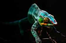 Framed Print - Funky Neon Chameleon (Picture Poster Lizard Animal Gecko Art)