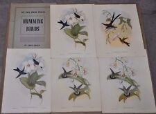Vintage 1946 John Gould Humming Birds Ornithology 5 Color Prints Book 16 x 20.5""