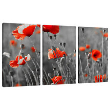 Lot de 3 rouge noir blanc mur art toile photos salon XXL 3135