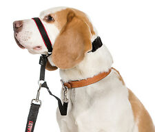 Halti OptiFit Headcollar for Dogs M Size Guaranteed To Stop Pulling Optimum Fit