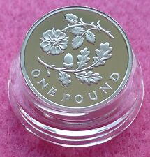 2013 PIEDFORT ENGLAND FLORAL ONE POUND SILVER PROOF COIN BOX AND COA