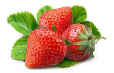 100pcs Seeds Red Strawberry Climbing Strawberry Fruit Plant Seeds Home Garden