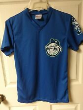 Vintage Asheville Tourists Minor League Baseball Pullover Jersey Youth Large SGA