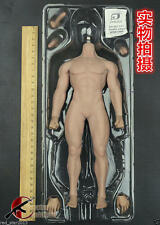 Phicen Super-Flexible Male Seamless Muscular Body w/ Steel Skeleton 1/6 (NO HEAD