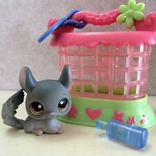 LITTLEST PET SHOP GRAY CHINCHILLA #144 w/carrier - USA seller - 9 pictures
