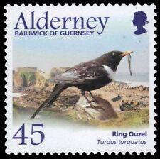 """ALDERNEY 237 - Ring Ouzel """"Turdus torquatus"""" (pa53819)"""