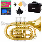 Mendini Gold Lacquer Mini / Pocket Trumpet +Tuner+Stand+Case