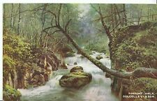 Wales Postcard - Torrent Walk - Dolgelley  ZZ1845