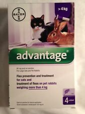 ADVANTAGE purple 4 pack for large cats or rabbits more than 9 pounds ( 4kg)