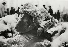 Frozen Soviet Russian Soldier Finland 1940 World War 2, Reprint 6x4 inch