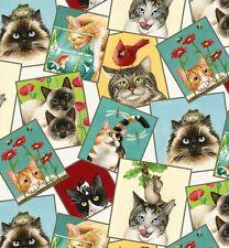 Elizabeth's Studio Curious Cats Quilt Fabric 4323 Cream Fat Quarter