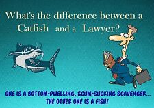 MAGNET Humor What is the Difference Between Catfish and Lawyer Fish
