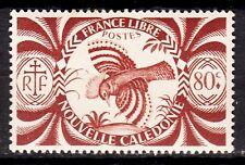 NOUVELLE CALEDONIE  TIMBRE COLONIE  FRANCE NEUF  N° 235 ** SERIE DE LONDRE CAGOU