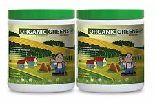 Organic Chlorella Powder - ORGANIC GREENS BERRY 552g - Super Antioxidant 2C