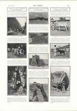 1905 Slum Holiday Fresh Air Fund Maharaja Mysore State Horse