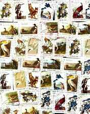 Collection of 40 Different BIRDS OF HAITI Stamps