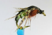 1 x Mouche peche NYMPHE SEDGE OLIVE H10/12/14/16 fly fishing fliegen mosca