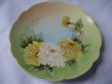 German J.C.& G.H.B. Co Findlay Bavaria Hand Painted Collectors Plate