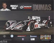 2013 12 Hours of Sebring ALMS Muscle Milk HPD Hero Card Romain Dumas