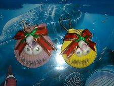 TWO (2) CHRISTMAS REAL PECTEN NOBILIS ORNAMENT WITH RED & GREEN RIBBON