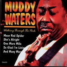 Muddy Waters / Walking Through The Park - MINT