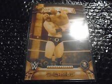 2016 Topps WWE Anti - Authority 5x7 Perspectives Gold  /10  Sheamus  #9AA