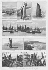 IRELAND Fishing Industry on West Coast; Berehaven, Valentia - Antique Print 1892