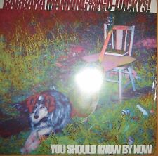 200g  Vinyl LP NEU + OVP Barbara Manning & The Go-Luckys You Should Know Pixies