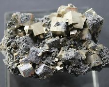 Pyrite and Galena  (small had specimen)