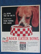 1961 Beagle Puppy Enjoys Purina Dog Chow from New Eager-Eater Bowl