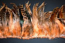 """Half Bronze 16g (100+pcs) SCHLAPPENS FRINGE Dyed PEACH 6-8"""" Rooster Feathers"""