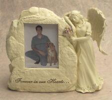 Urna Para Gatos De Perro - Decoración Lápida - La Animales - 20242