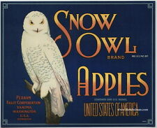 SNOW OWL Vintage Yakima Apple Crate Label blue, Bird, *AN ORIGINAL 1930's LABEL*
