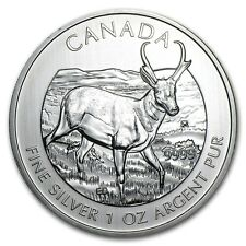 2013 Silver Maple Leaf One Ounce Antelope $5 Fine .9999 Silver Coin