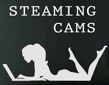 SteamingCams.com - Aged Brandable Domain Name for Adult Webcam and Sex Website