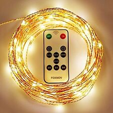 FOXNOV Waterproof 33Ft 100 LED Copper Fairy String Lights, Warm White, IR 2 in 1
